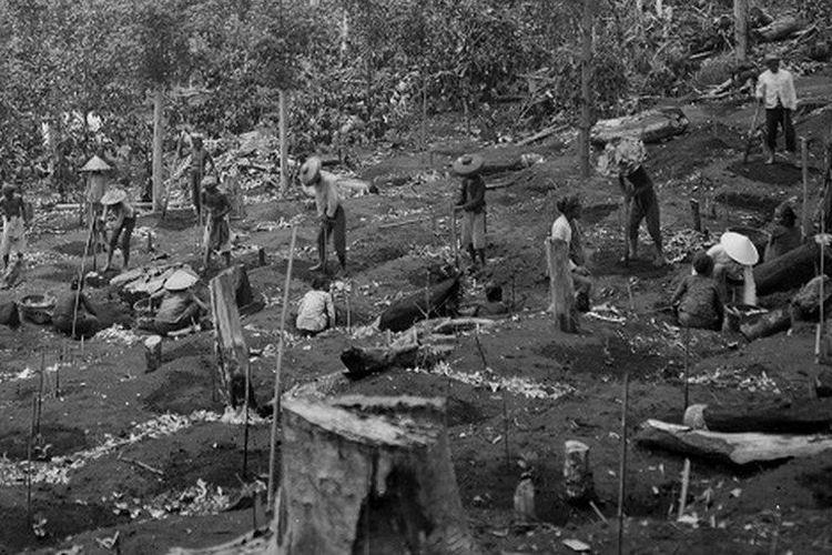 Pembukaan perkebunan di kawasan Priangan sekitar tahun 1907-1937. Era budidaya tanaman kopi berdasarkan kerja paksa dimulai di Priangan pada awal abad ke-19. Konsep ini disebut Preangerstelsel. Sistem inilah yang kemudian mengilhami Cultuurstelsel atau tanam paksa di berbagai wilayah di Hindia Belanda.