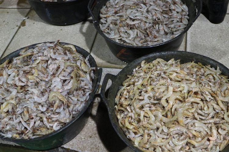 Hasil laut berupa udang di Pasar Ikan Modern Muara Baru, Jakarta Utara.