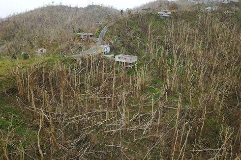 Laporan Terbaru Klaim Badai Maria di Puerto Rico Renggut 2.975 Jiwa