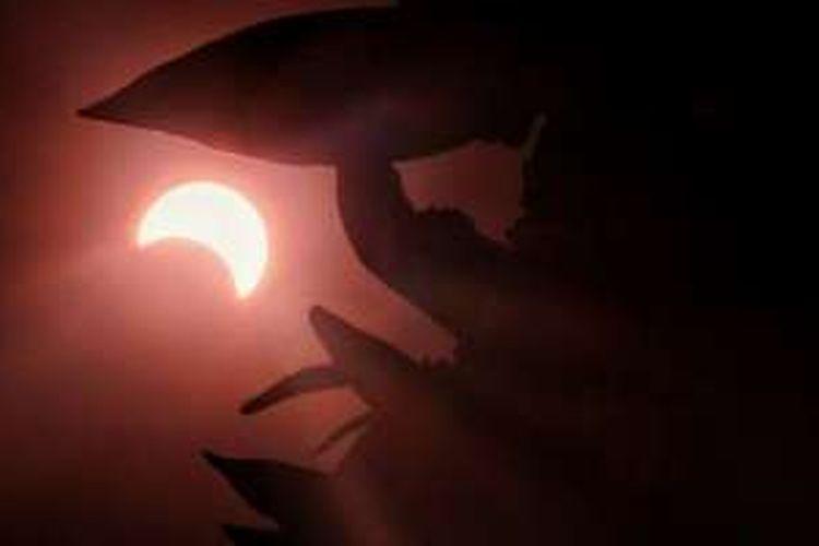 Foto gerhana matahari yang dibagikan netizen di Twitter.
