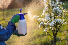 Awas, Sepertiga Lahan Pertanian Global Berisiko Kena Polusi Pestisida