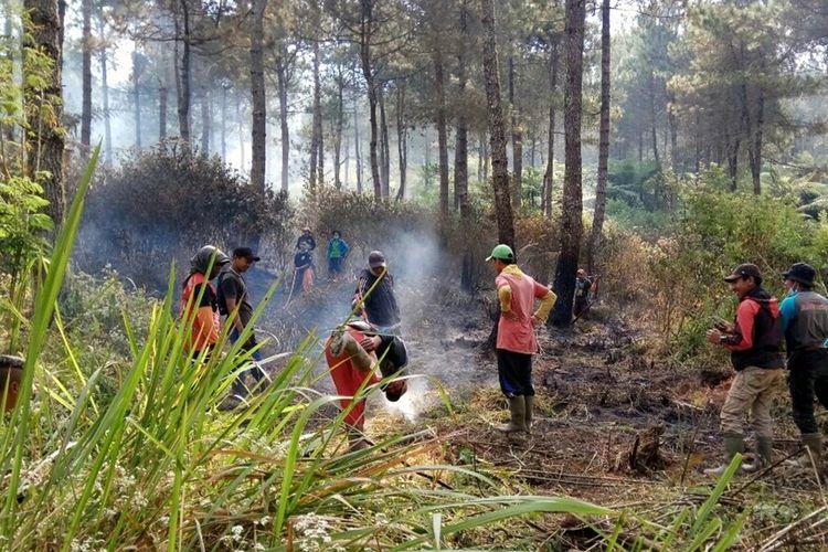 Sedikitnya satu hektar kawasan hutan pinus di lereng timur Gunung Slamet, Jawa Tengah, ludes terbakar, Rabu (11/9/2019) siang.