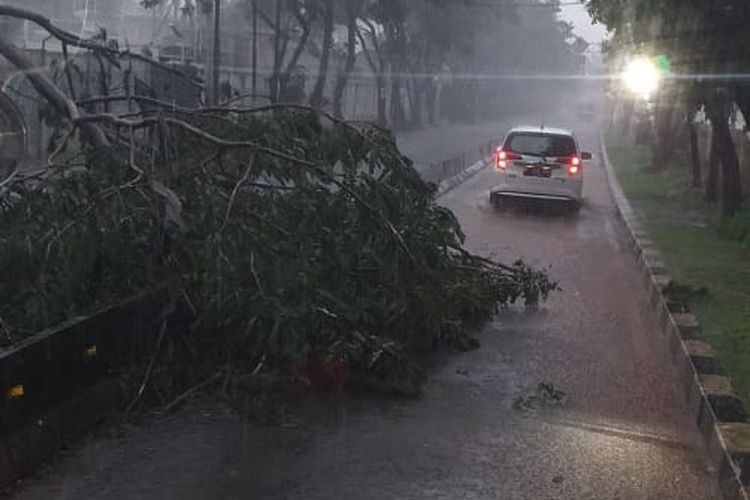 Pohon tumbang di kawasan Kembangan, Jakarta Barat, pada Rabu (14/4/2021).