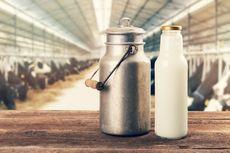 Koordinasi Antarkementerian Diperlukan untuk Dorong Industri Susu Segar