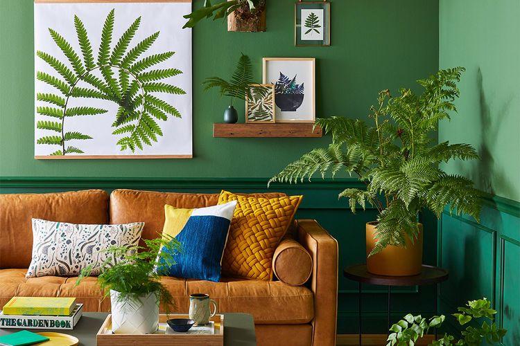 Padu-padan sofa coklat dengan dinding hijau dan tanaman hias.