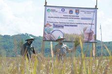 Ikut Panen Raya di Cilacap, Anies: 99 Persen Kebutuhan Pangan di Jakarta Dipasok dari Luar Daerah