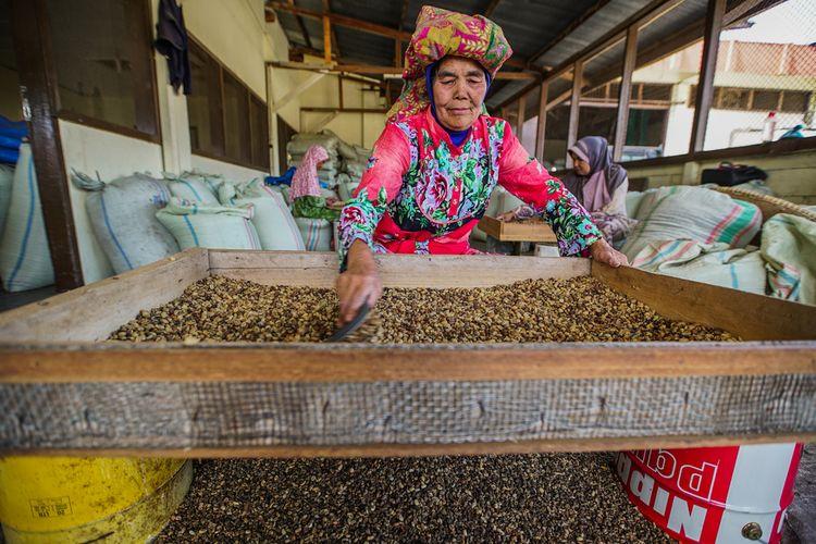 Ilustrasi proses pembersihan biji kopi dari kotoran di Bener Meriah, Aceh.