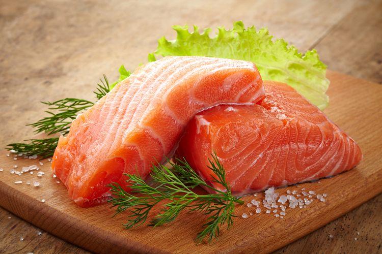 Ilustrasi fillet ikan salmon
