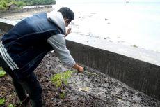 Bau Busuk Tumpahan Minyak Sawit di Buton Selatan Sebabkan Warga Pusing dan Mual