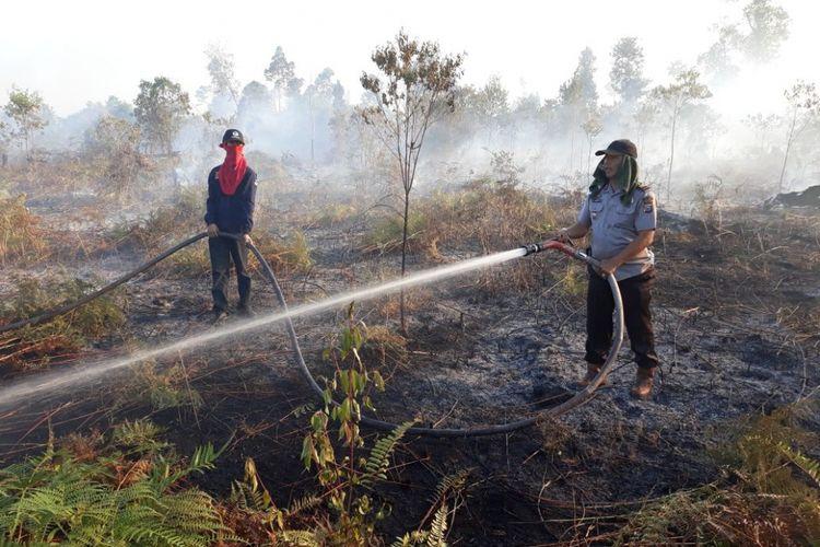 Tim satgas berupaya memadamkan kebakaran hutan dan lahan di kampung bungsur kecamatan sungai api siak