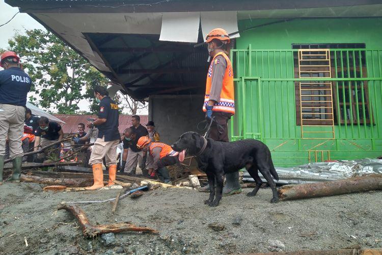 Sam, lola, Lara dan Oro adalah empat ekor anjing dari unit K-9 SAR yang didatangkan dari Mabes Polri sejak Selasa (19/3/2019) pagi.