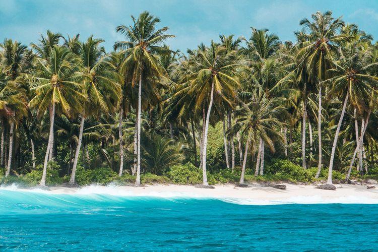 Ilustrasi pantai di Kepualauan Mentawai.