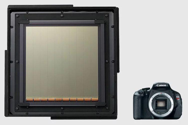 Sensor Raksasa Canon