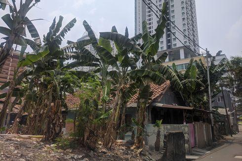 Dulu Warga Kampung Kebon Melati Sering Terganggu Dentuman Paku Bumi dan Mandi Debu