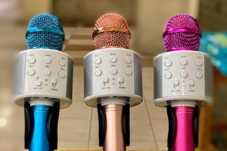 Mic bluetooth karaoke WSTER WS-858