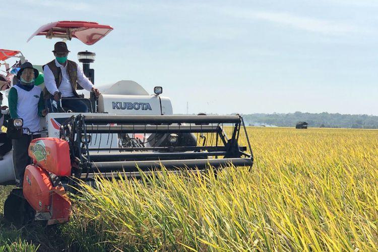 Dirut Perum Bulog Budi Waseso bersama petani