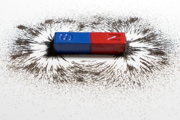 Biji besi diletakkan disekitar magnet agar nampak pola-pola medan magnet.
