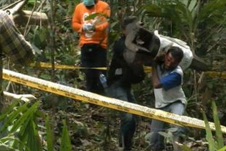 Lokasi penemuan bangkai gajah di Aceh Barat.