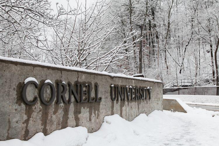 Ilustrasi Cornell University