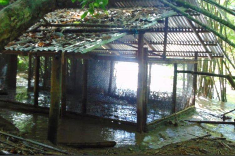 Kondisi hatchery saat banjir menggenangi kawasan peneluran burung maleo di Hungayono Taman Nasional Bogani Nani Wartabone.