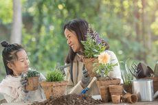 Berkebun Selama Pandemi, Hasilkan Sayuran Sehat dan Lepas Stress