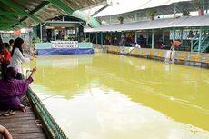 Menikmati Kuliner Ikan di Rowo Jombor
