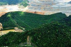 Konsorsium Asal China Ditunjuk untuk Garap Proyek Smelter Amman