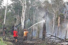 138 Hektare Lahan di Taman Nasional Danau Sentarum Terbakar