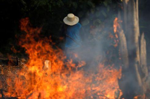 Presiden Brasil dan Perancis Bertengkar soal Kebakaran Hutan Amazon