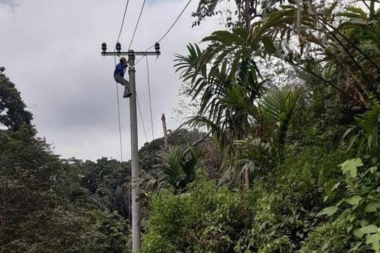 Seorang petugas PLN memasang jaringan untuk mengaliri listrik di dua dusun di kaki Bukit Barisan.