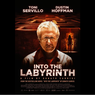 Sinopsis Into the Labyrinth, Misteri Penculikan Seorang Remaja