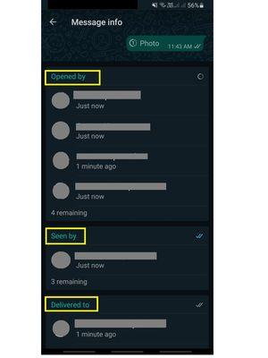Fitur view once di grup WhatsApp, di mana pengirim bisa melihat siapa saja yang telah membuka, melihat, dan menerima foto atau video.