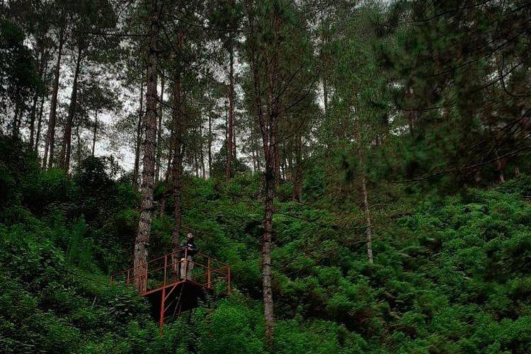 Tempat wisata bernama Curug Sinom Indah di Kabupaten Banjarnegara, Jawa Tengah (dok. Curug Sinom Indah).