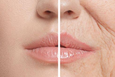 7 Cara Meningkatkan Kolagen dalam Tubuh