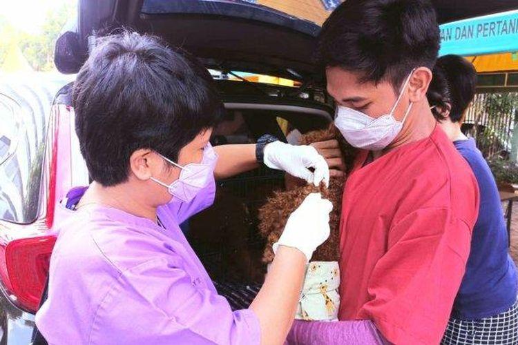 Suku Dinas Ketahanan Pangan Kelautan dan Pertanian atau Sudin KPKP Jakarta Pusat melaksanakan vaksinasi rabies untuk hewan. Kegiatan vaksinasi dilakukan di Kantor Sudin KPKP Jakpus di Jalan Gunung Sahari.