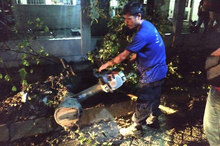 Seorang petugas memotong batang pohon yang tumbang di Perumahan Indraprasta, Kelurahan Tegal Gundil, Kecamatan Bogor Utara, Kota Bogor, Kamis (10/10/2019).