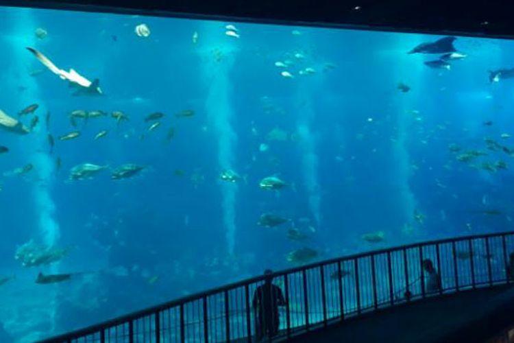 S.E.A Aquarium di Resort World Sentosa, Singapura, Rabu (12/4/2017).