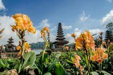 Mengapa Hanya Bali yang Syarat Masuknya Wajib Tes PCR? Ini Alasannya
