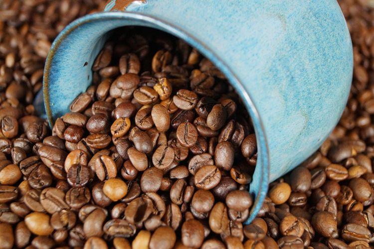 Biji kopi siap digiling