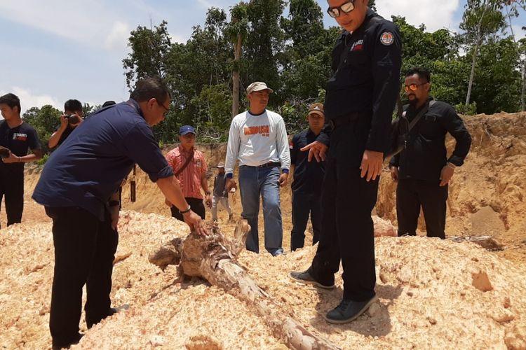 Petugas saat memeriksa lahan hutan lindung yang rusak di Bangka Tengah.