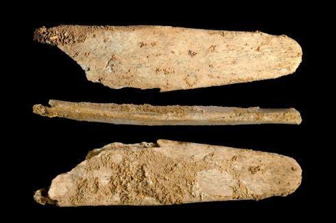 Manusia Purba Neanderthal Lebih Cerdas dari Perkiraan Kita, Ini Buktinya