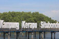 Wisata Kampung Kerapu, Sajian Potensi Budidaya Ikan dan Panorama Alam