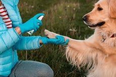 Jangan Bersihkan Kaki Anjing dengan Hand Sanitizer, Ini Penjelasannya