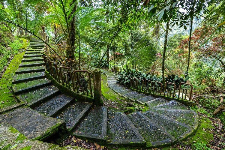 Ilustrasi Sumatera Barat - Sebuah jalur di Taman Nasional Kerinci Seblat.