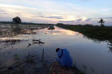 Setelah Ada Tambang, Tiap Tahun Petani di Kukar Merugi karena Sawah Terendam Banjir