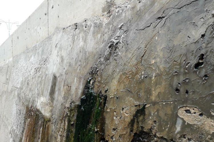Tembok tanggul pengaman laut di Muara Baru tampak basah dan berlumut akibat bocornya tanggul, Selasa (11/12/2018).