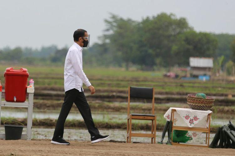 Presiden Joko Widodo saat mengunjungi kawasan food estate di Kalimantan Tengah.