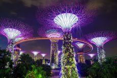 Liburan ke Gardens by the Bay Singapura Saat New Normal, Ini Ketentuannya