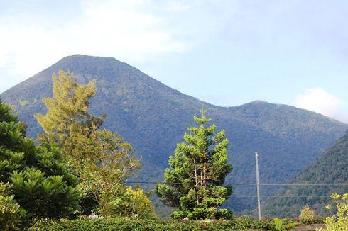 Jalur Pendakian Gunung Gede Pangrango Ditutup hingga Akhir Maret 2020
