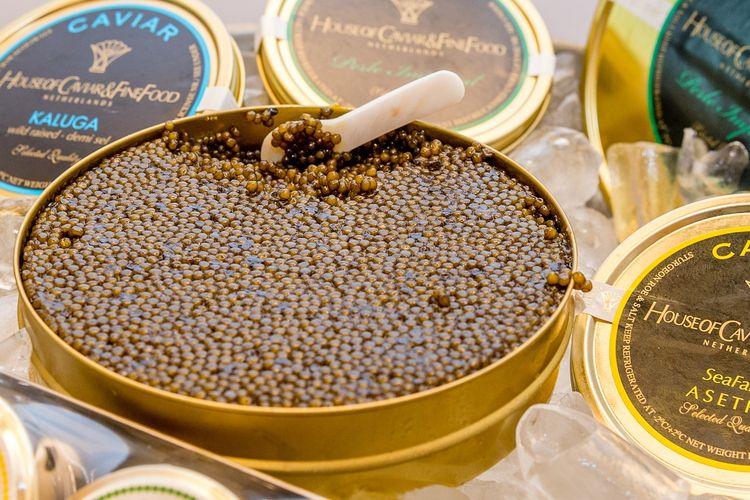 Ilustrasi caviar, telur ikan yang harganya mahal.